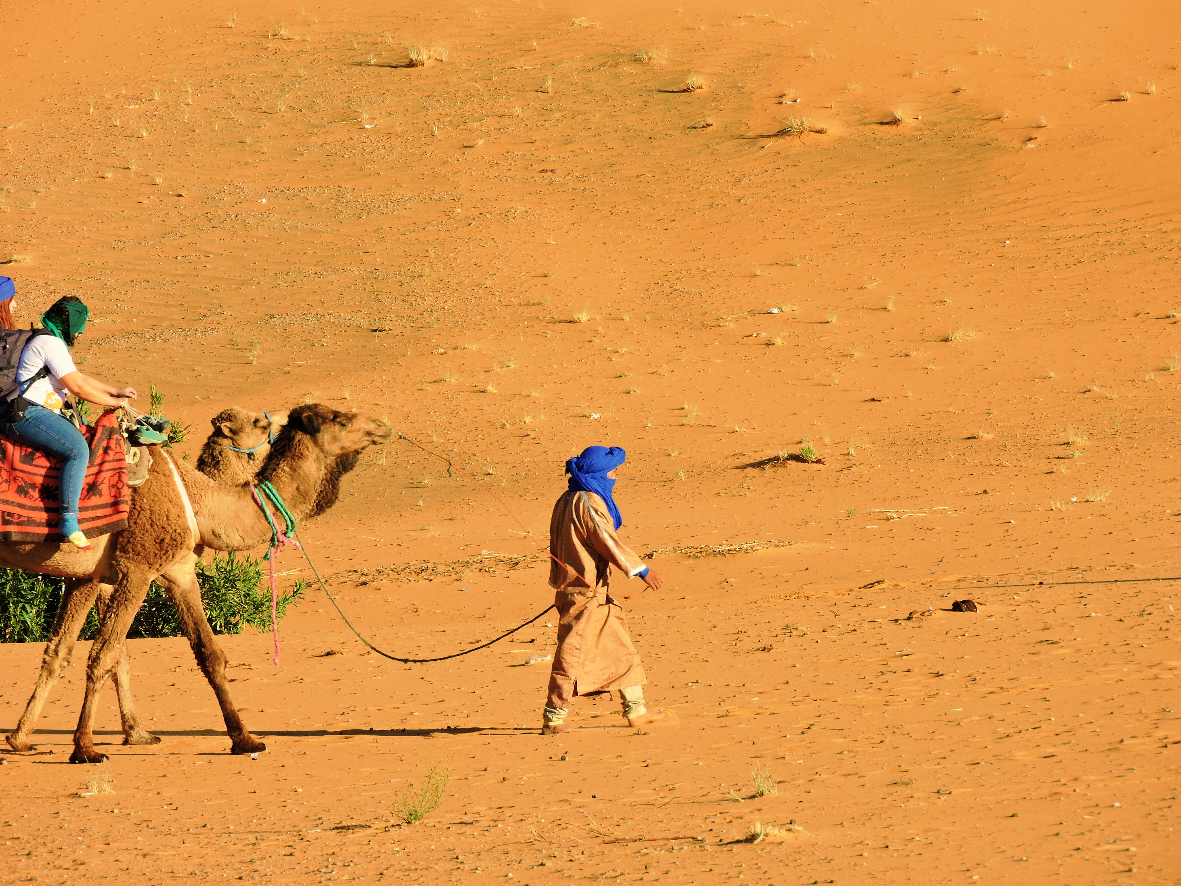 From Marrakech to the high dunes of Merzouga